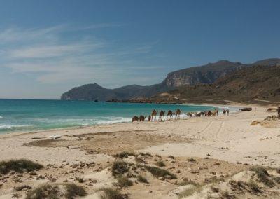 Al-Fizajah-Beach, für uns ein absolutes Highlight im Oman