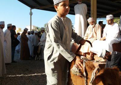 Auf dem Viehmarkt in Nizwa