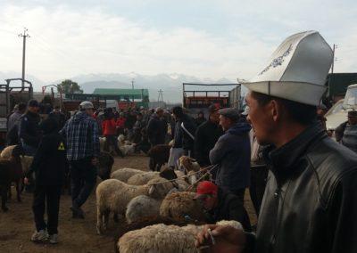 Auf dem riesigen Viehmarkt in Karakol