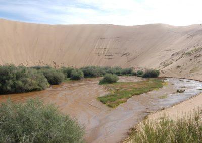Das Wasser tritt am Fuss der Dünen hervor und bildet einen kleinen Fluss