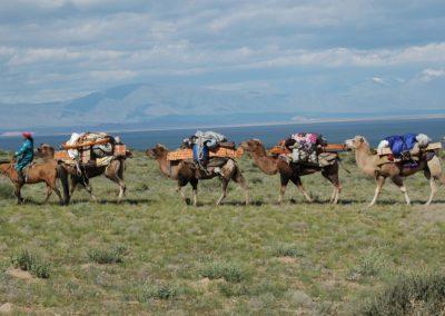 Es ist Ende August, die Nomaden ziehen vom Sommer- ins Herbstlager