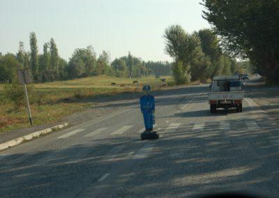 Blechpolizist sorgt für Sicherheit auf dem Zebrastreifen