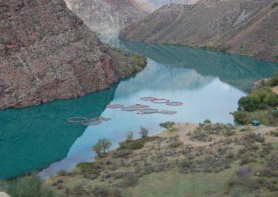 Fischzucht in der Narynschlucht