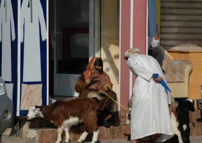 Schafe und Ziegen werden auf dem Markt häufig von Frauen mit dem traditionellen Gesichtsschmuck verkauft